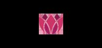 Hannakoumi Logo